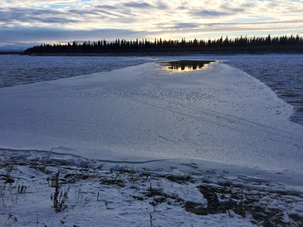 On November 29 the River 5 miles below Napaimute split all the way across. Above this the ice broke up and shifted all around. It's all freezing back together again now.